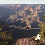 Gran Canyon National Park   Arizona