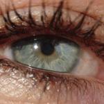 Occhio furbo: Iosella