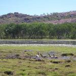 Kakadu Park