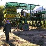 Mc Lees Tobacco's Farm - la macchina raccogli tabacco