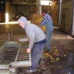 Joe and Peter Tobacco's Farm - Ele