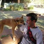 Max ed un Dingo