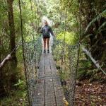 3° GIORNO Picton (Queen Charlotte Tracks) - Havelock