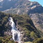 10° GIORNO Milford Sound (Scenic Route) - Curio Bay